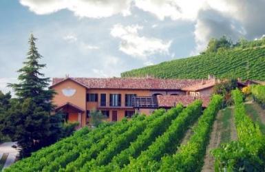 Calamandrana, ,Rural Estate,For Sale,1013