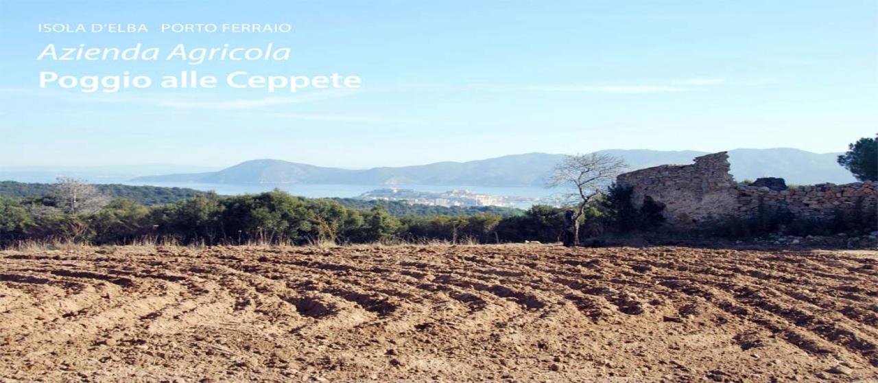 Portoferrario, ,Rural Estate,For Sale,1016