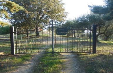 Migliano, ,Farmhouse,For Sale,1017
