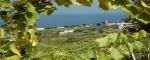 Salina, ,Rural Estate,For Sale,1023